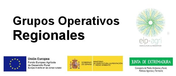 Grupos Operativos Regionales