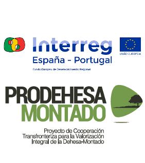 POCTEP - PRODEHESA MONTADO
