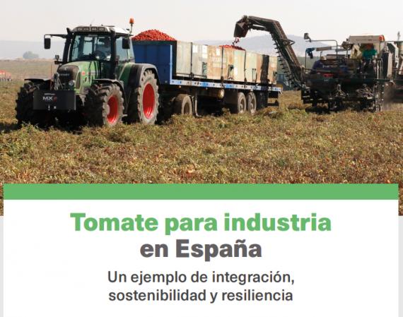 La revista MERCASA publica un artículo sobre el tomate para industria