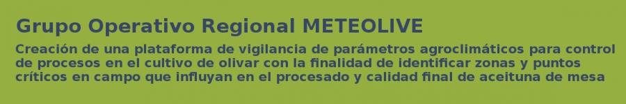 Grupo Operativo Regional - METEOLIVE