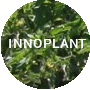 INNOPLANT