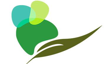 Estudio para la valorización de los productos de las industrias trasformadores del olivar del Geoparque Villuercas, Ibores y Jara