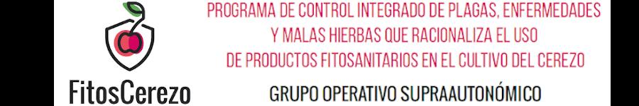 Grupo Operativo Supraautonómico - FITOSCEREZO